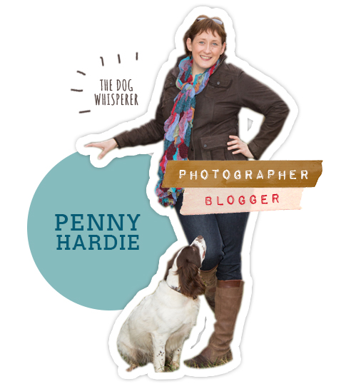 Penny-Profile