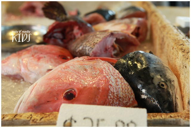 FIsh heads from wet market