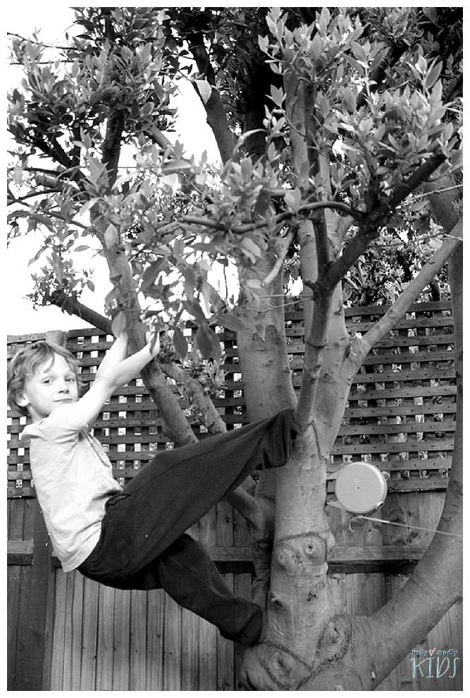Why Children Should Climb Trees