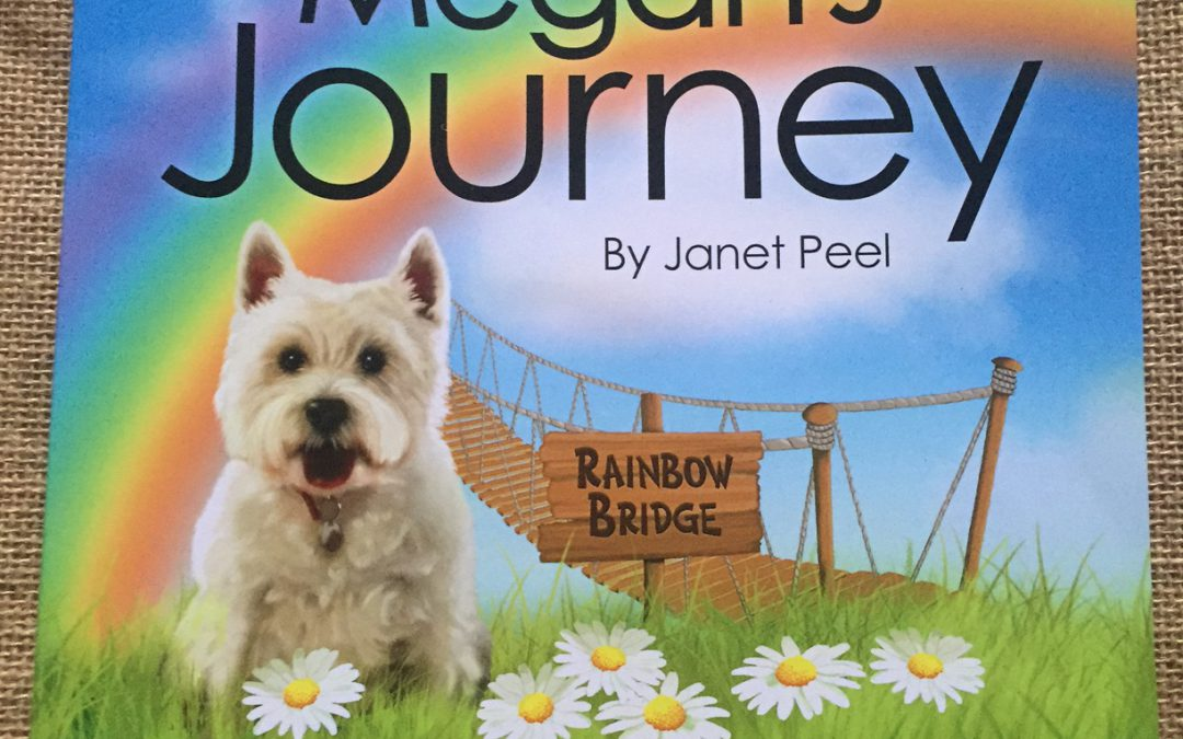 Megan's Journey – Book Competition