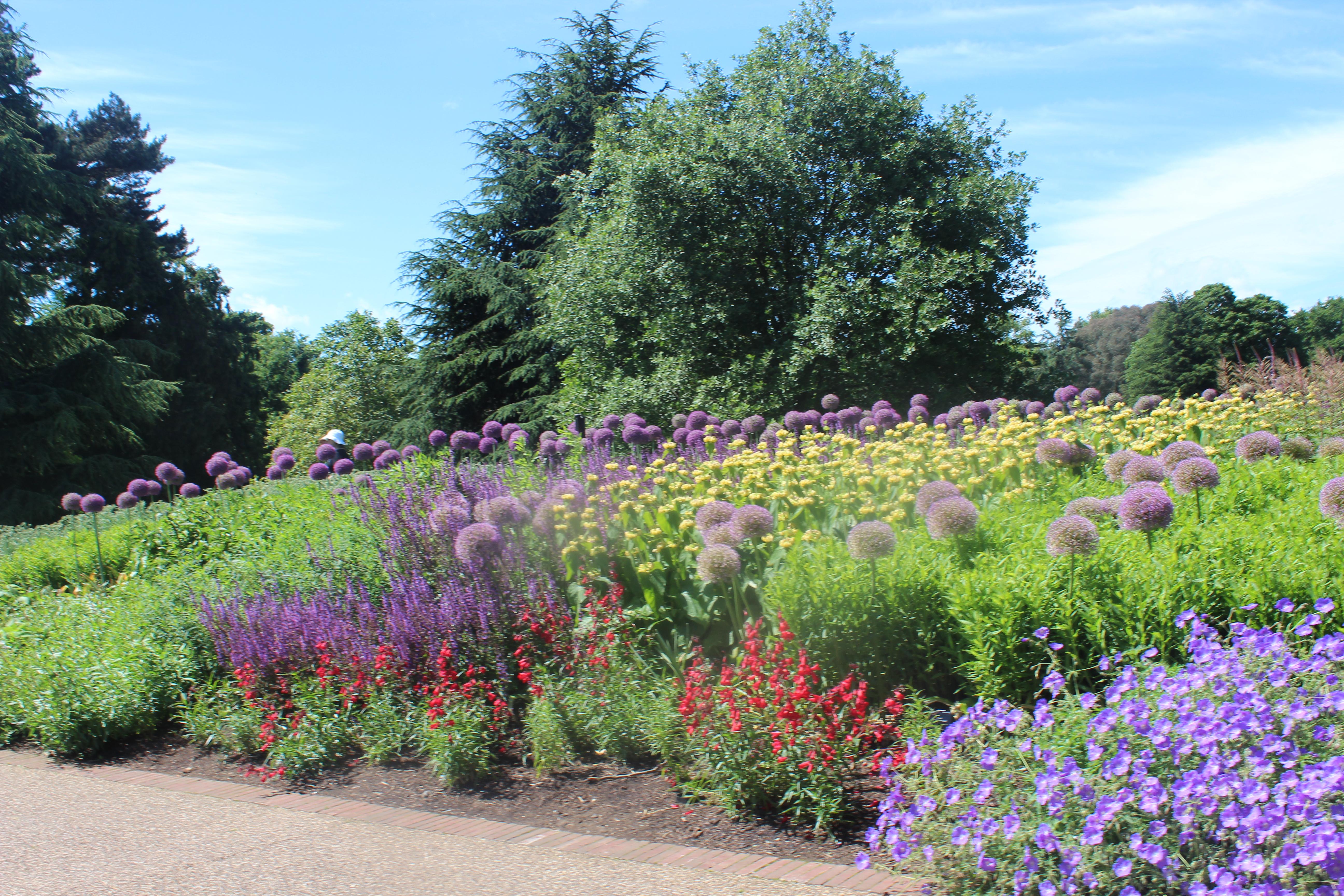 longest herbaceous border, great broad walk kew gardens, three3 things to see at kew,